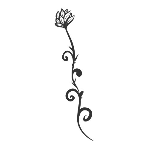 Vector-Illustration-add-on-vine-flower
